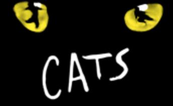 CATS_MOGADOR