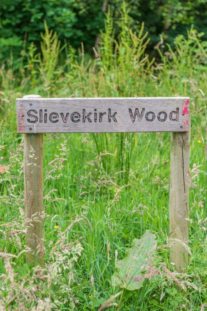 celtic_titles_slievekirk_wood